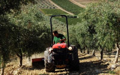 ¿Cómo elegir un tractor agrícola? Principales consejos